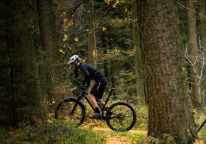 guided mountain bike tour on the kenai peninsula
